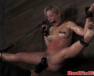 Wall bound up sub cherie deville caned